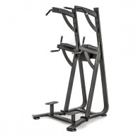 Professionel roman chair pullup og dip stativ